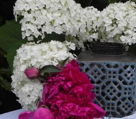 white-hydrangea-peony-w