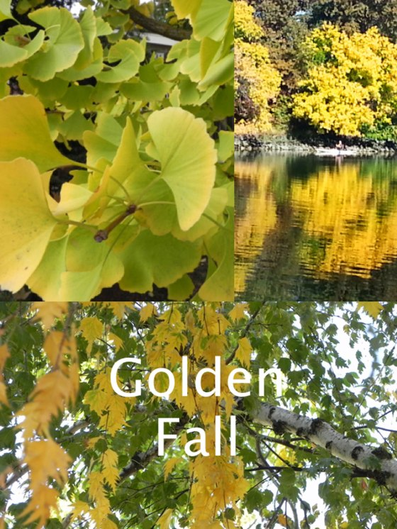 Golden-collage-for-blog